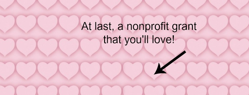 At last, a nonprofit grant that you'll love!