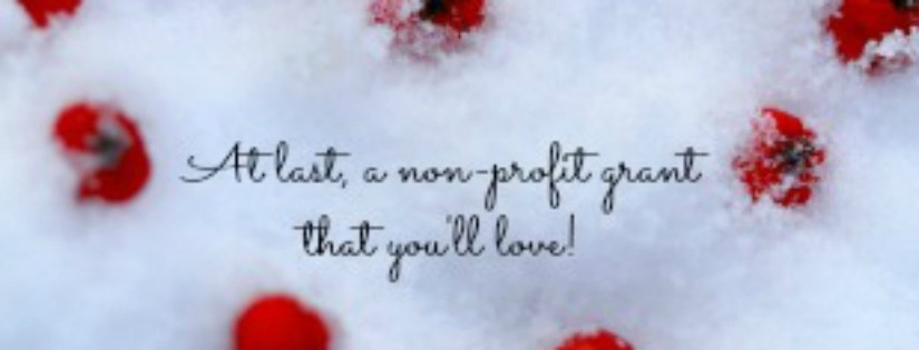 A nonprofit grant that you willlove!